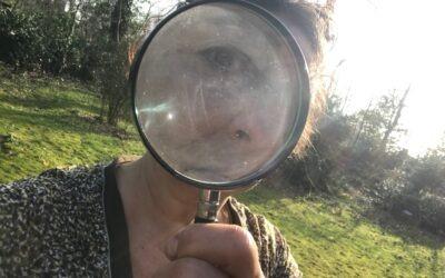 Je leven door een vergrootglas